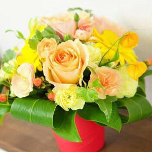 【送料無料】《アレンジメント・花束》☆店長おまかせアレンジor花束