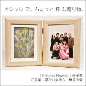 押し花写真立てギフト『母子草』
