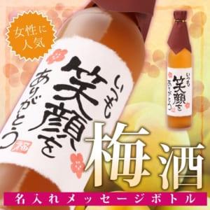 【手書きラベル】名入れ梅酒 メッセージボトル 500ml