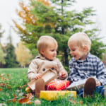【3歳男の子】知育を刺激する誕生日プレゼント特集【選りすぐり絵本・おもちゃ・おもちゃ以外】
