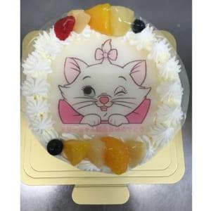 【カトルセゾン】生クリームのフォトケーキ