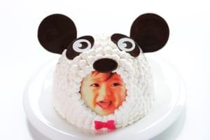 立体動物写真ケーキパンダ5号
