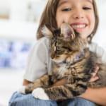 猫ブーム到来!?猫好きさんが増加中!癒される猫好きさんに必見のプレゼント特集