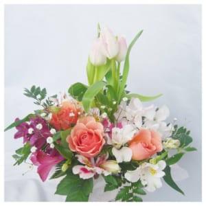 【ピンクのチューリップと季節の花】