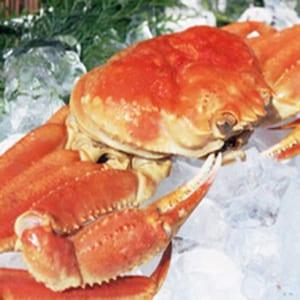 【送料無料】蟹本来の味「本ズワイガニ生ポーション」