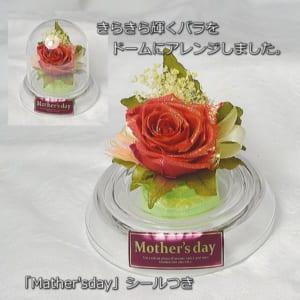 【ロールケーキとプリザーブドフラワー】