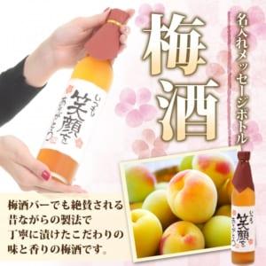 【手書きラベル】名入れ梅酒 メッセージボトル 500ml (寿海酒造)