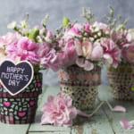 大切なお母さんに贈りたい!母の日に贈る華やかな【鉢植え】のプレゼントをご紹介