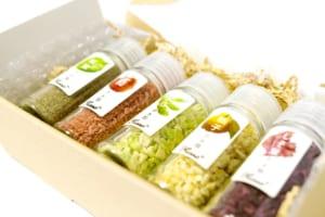 野菜のお塩 5点セット Flusso フルッソ 新感覚調味料 オーガニック 有機湖塩