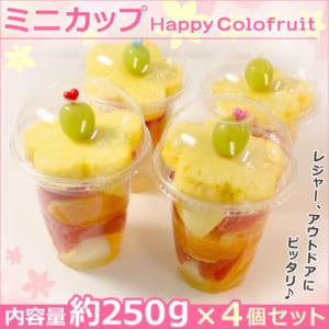 ハッピーカラフルーツ ミニカップ(カットフルーツを可愛くカラフルに盛りつけました) フルーツフラワーアレンジメント[ハッピーカラフルーツ]シリーズ by ギフトパーク