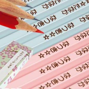 【名入れ無料】国産2Bパステルカラー名入れ鉛筆1ダース