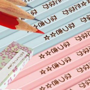 国産2Bパステルカラー名入れ鉛筆1ダース