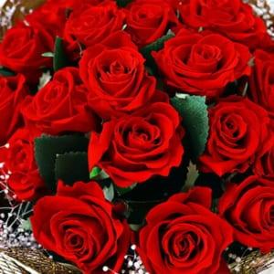 プリザーブドフラワー 花束108本 バラ