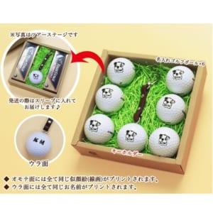 【名入れ】☆ゴルフボール ペット 似顔絵