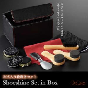 Modello シューシャインセット 靴磨きセット ボックス入り シューケア 靴クリーム ブラシ スポンジ 靴ベラ 不織布 ギフトセット by CAMERON