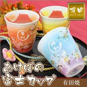 あけぼの富士フリーカップ