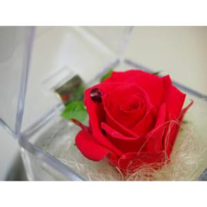 誕生月カラーのバラを誕生日のプレゼントに・スワロフスキー付