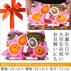 フルーツセット季節の果物盛り合わせ