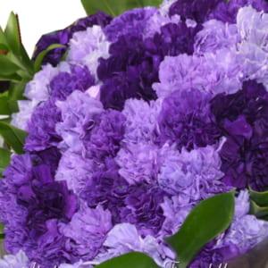 ムーンダストカーネーションの花束