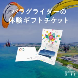 PARAGLIDER TICKET by asoview! GIFT(アソビューギフト)