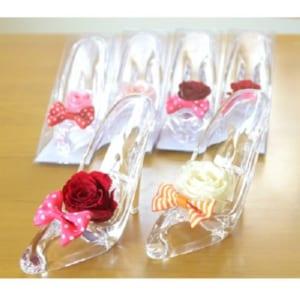プレジールミニ ガラスの靴