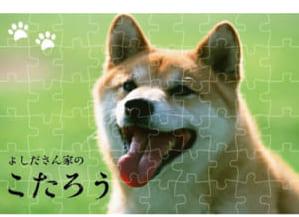自由コメント★フォトパズル by michi's GALLERY