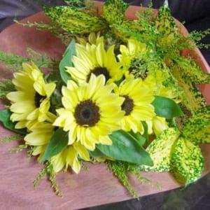 ひまわり10本の花束