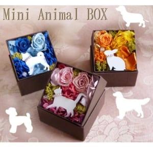 【Mini Animal Box プリザーブドフラワー】 ボックスフラワー mini ギフト プレゼント お祝い by プリザーブドフラワー動物のお花屋