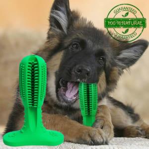 犬用歯ブラシ