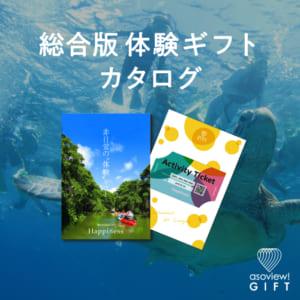 総合版体験ギフトブック Happiness by asoview! GIFT(アソビューギフト)