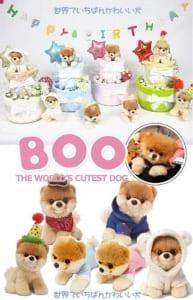 【世界一かわいい犬★BOO】 おむつケーキ by AIRIM BABY