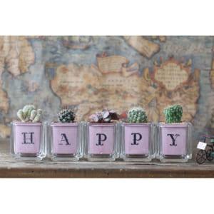 サボテン多肉植物 HAPPY ガラスキューブ5個セット by GreenFactory