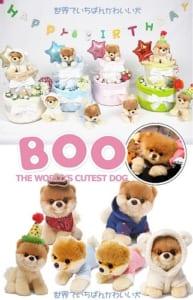 【世界一かわいい犬 BOO】 おむつケーキ