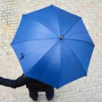 メンズにおすすめの傘ブランドを解説!おしゃれな21アイテムもご紹介