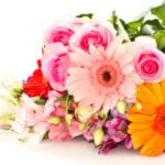 母の日にふさわしい花言葉は?最適なお花7選と喜ばれる植物ギフト特集